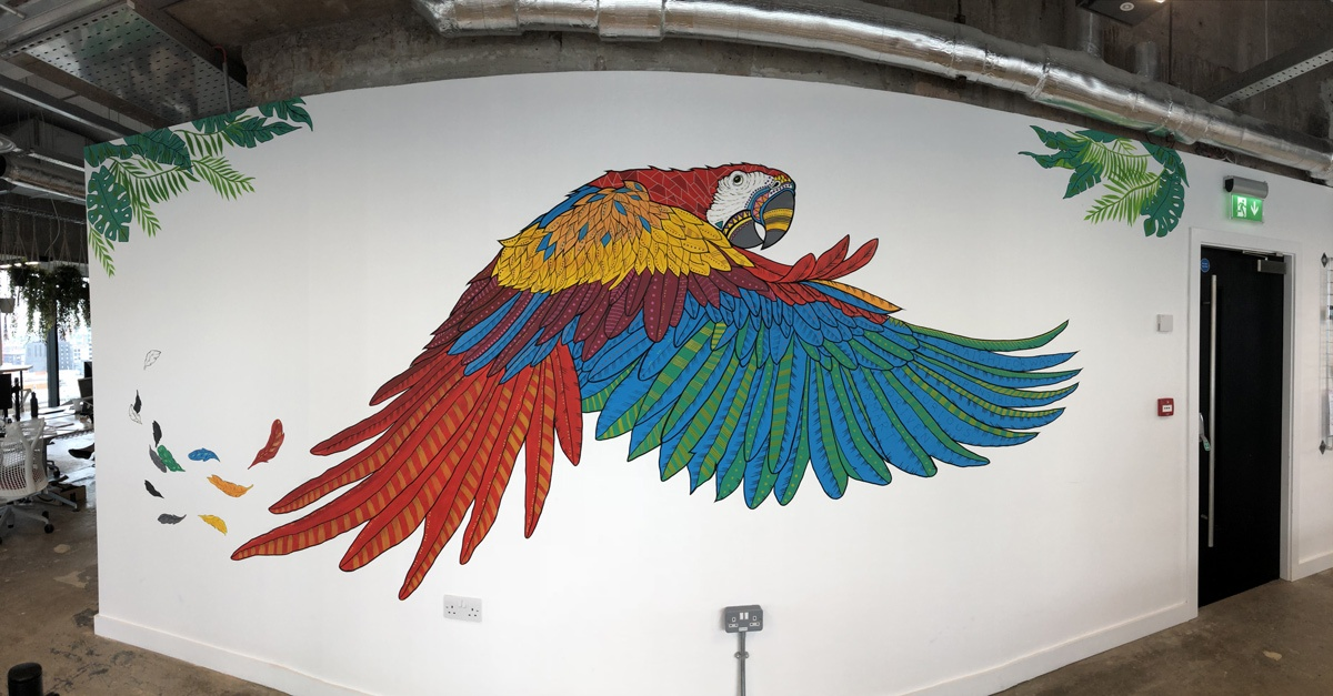 peak-office-macaw